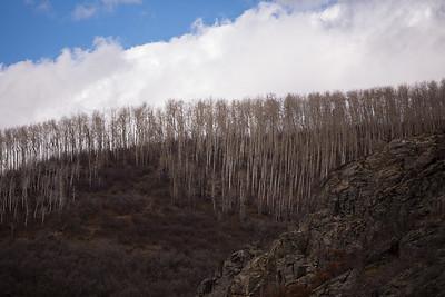 Colorado IMG_7893