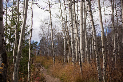Colorado IMG_7891
