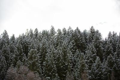 Colorado IMG_7925