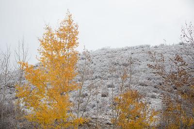 Colorado IMG_7926