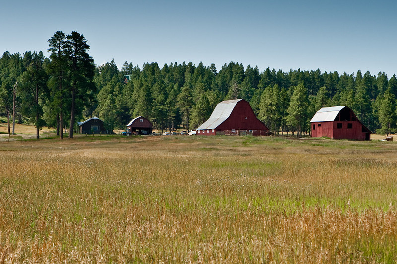 I loved these barns. This is just south of Pagosa Springs, Colorado