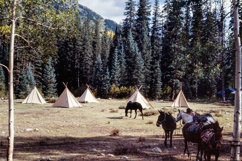 horse_camp-t10121