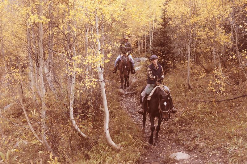 horses+trail-t10175