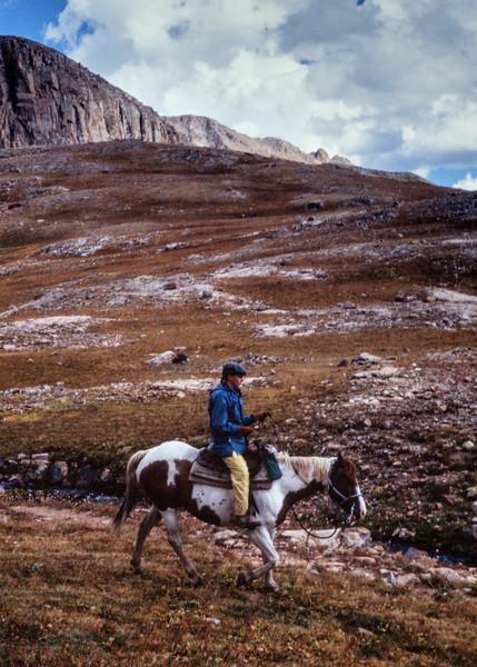rita+horse-t10151