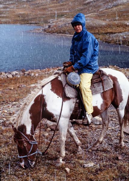 rita+horse-t10145