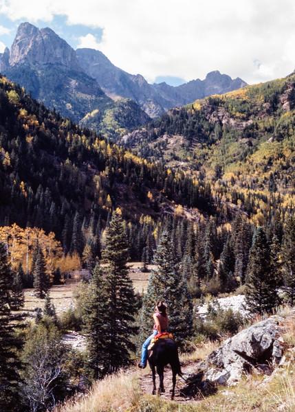 mountain_horse_trail-t10119