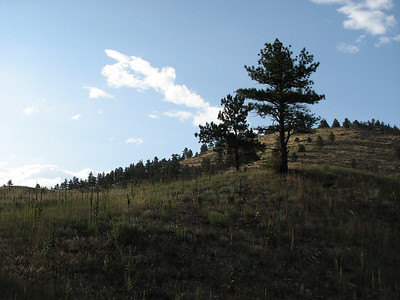 On the road between Evergreen and Morrison Colorado