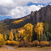 Aspens and rocks Colorado