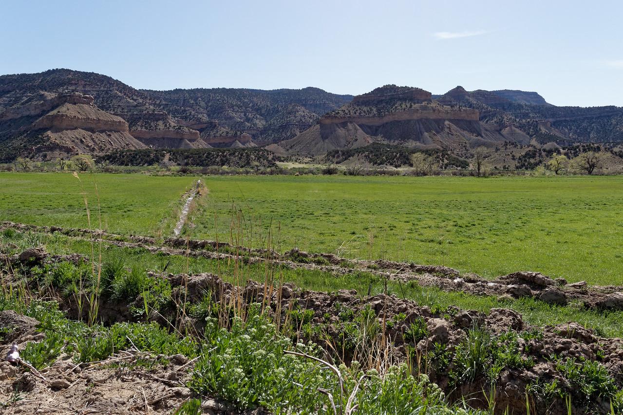 Route 139  (Colorado)