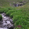 Cascading stream from Sloan Lake flows through American Basin wildflowers toward the Lake Fork of Gunnison River at 12,300 feet elevation.<br /> July 21, 2013