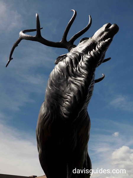 Elk sculpture at the Leaning Tree Museum and Garden, Boulder, Colorado
