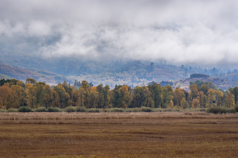 Misty fall morning, just south of Steamboat Springs, Colorado.