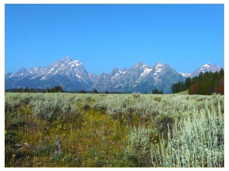 Grand Teton Mtns.