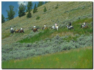 Trail riders near Grand Tetons (101247036)