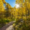 _DLS6168_Maroon Bells Trail