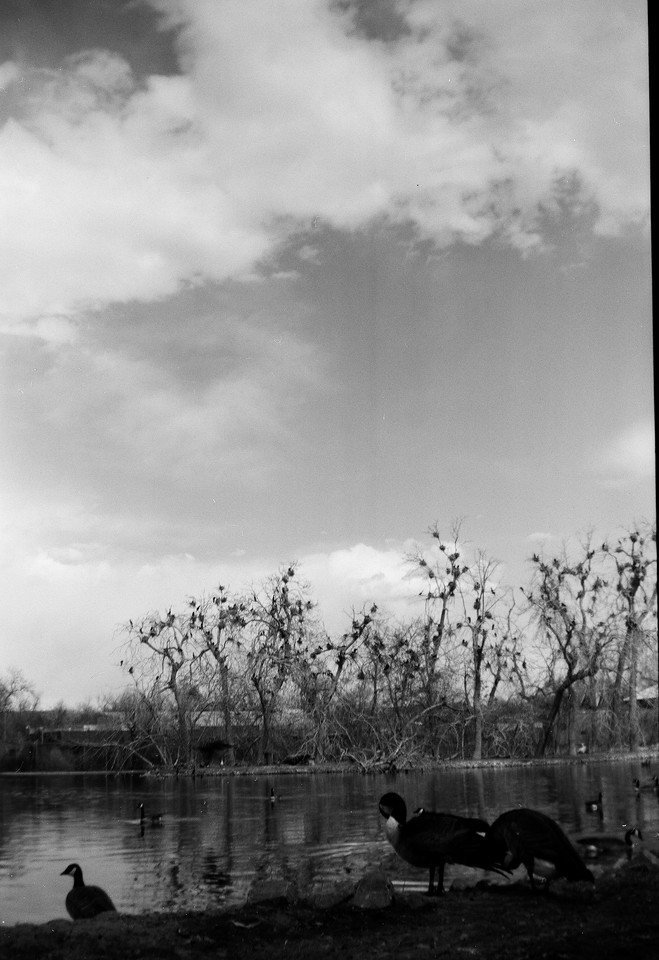 City Park, Denver.<br /> Kodak Brownie No.2 (?), Kodak TMax 400