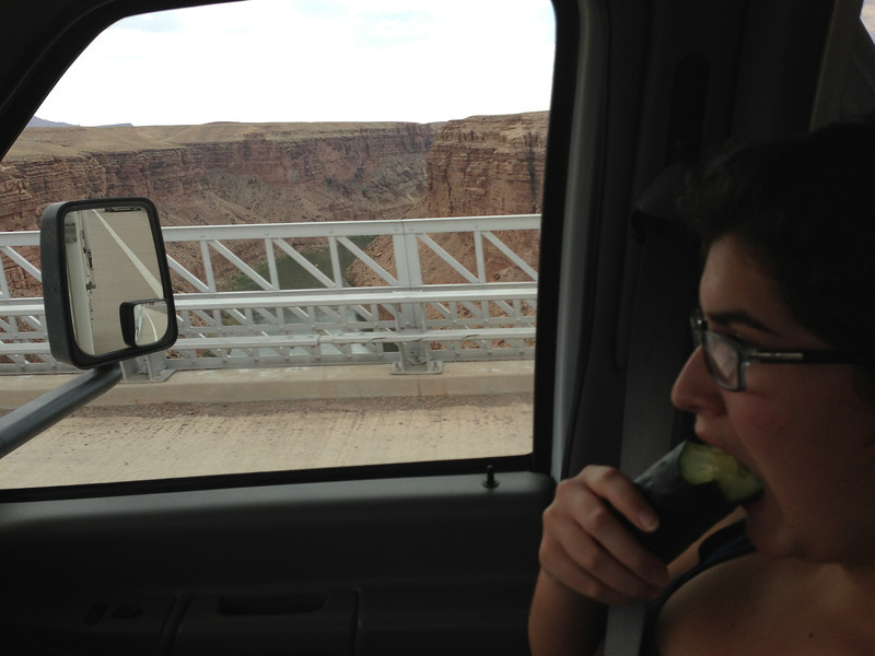 We stopped at the Navajo Bridge and looked around.