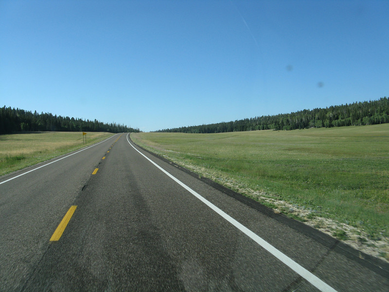 Beautiful meadows in the higher country of the north rim.