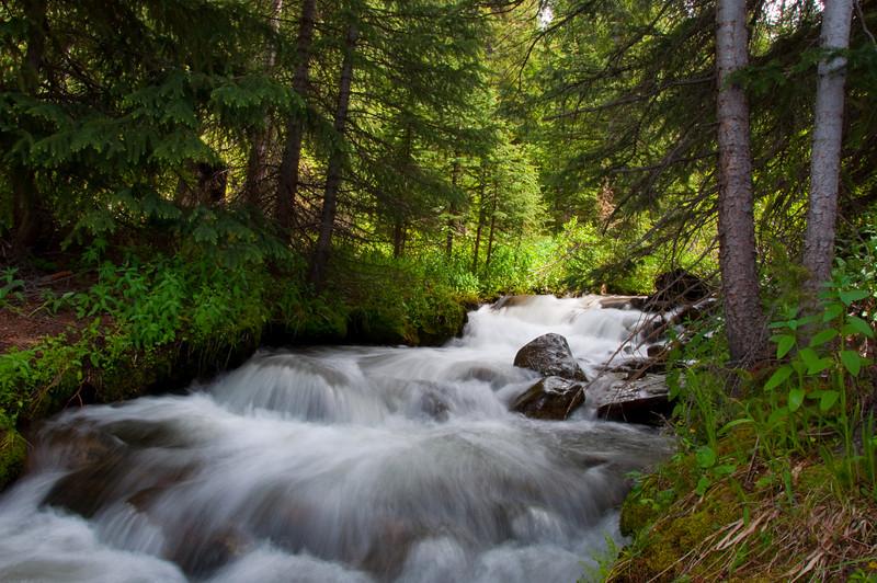 Creek Crossing along Colorado Trail near Copper Mountain,