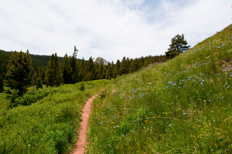 Colorado trail climbing from Copper Mountain to Searle Pass.