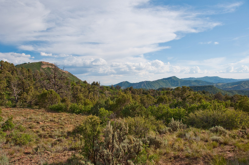 View from middle of Anasazi Descent Trail.  Horse Gulch Area Durango.