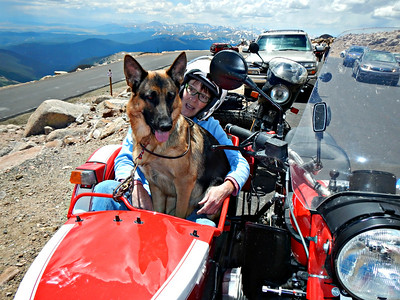 //redlegsrides.blogspot.com/2014/07/two-dogs-sidecar-and-ride-to-mount.html