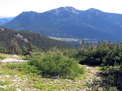 Hike to Chasm Lake: Looking back, now above the treeline.