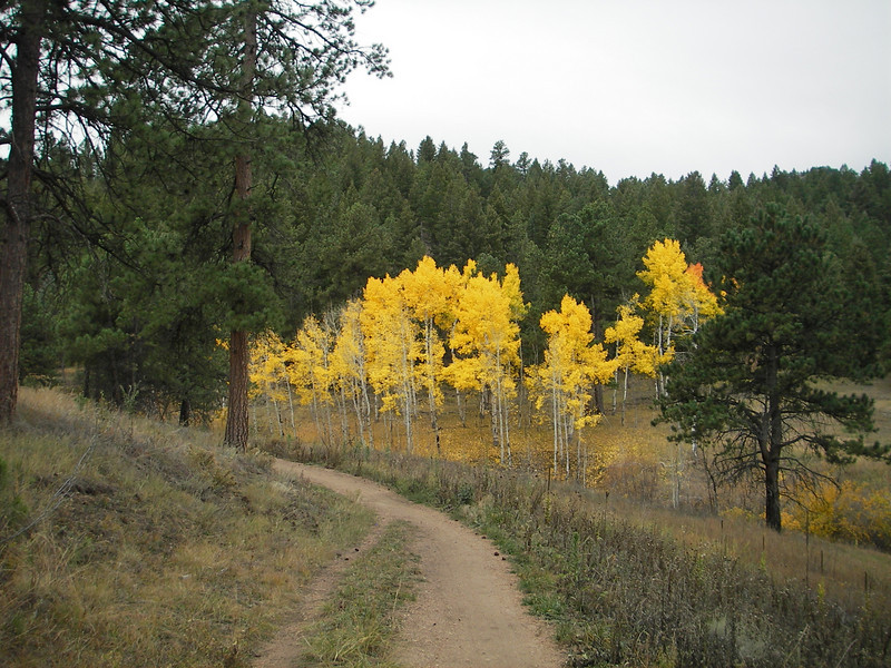 Lair of the bear - Morrison , CO - Fall 2006