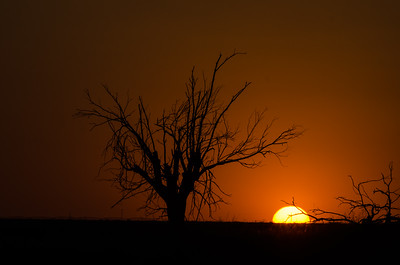 Texas Sunset - on the road to Colorado - 2013 Copyright ©  2013 - Photo by Barry Jucha Texas -