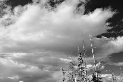 Sky above Sallie Barber Mine.  Black/white image.