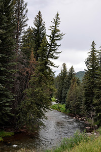 Fishermen along beautiful Gore Creek which runs through Vail and down past our rooms in West Vail.