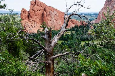 Colorado 2016 - BJ2_1766