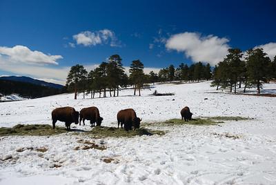 Colorado 040209 074