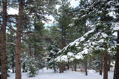 Colorado 040209 059