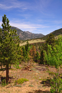 Views Along RMNP's Trailridge rd.