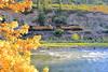 DJRI_copyright_2012-09-20@18-55-07