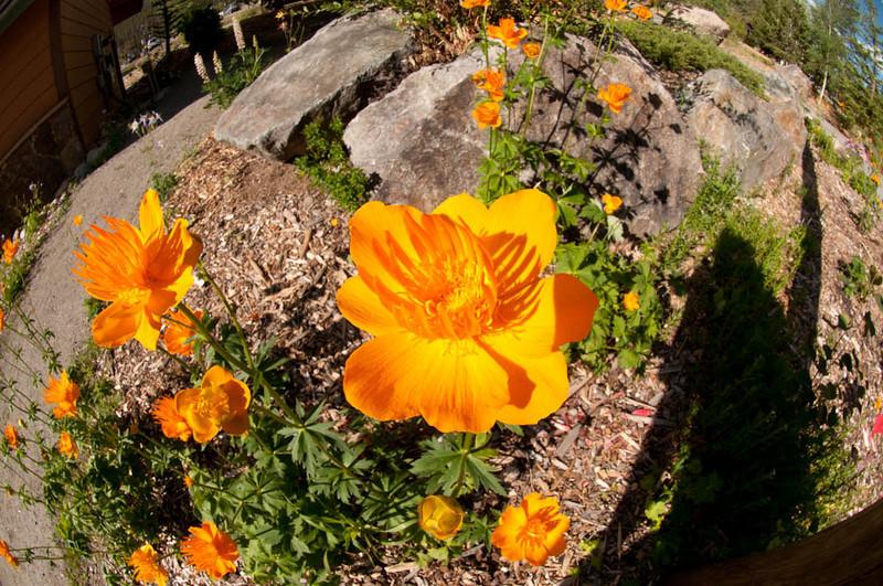 20100718_Colorado_Vacation_2010_0133