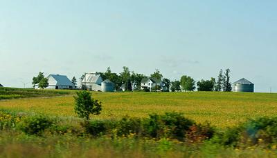 Driving - Iowa Farm