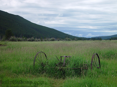 An old piece of farm equipment rusting away in the grass in Rocky Mountain National Park.