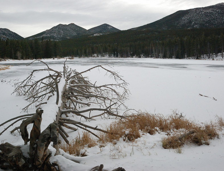 Sprague Lake@RMNP 122008