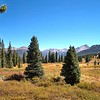 Rocky Mountain Prairie