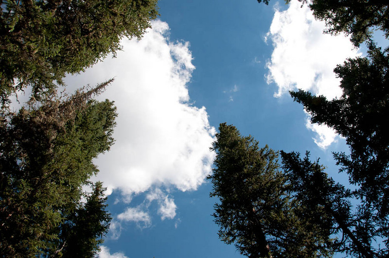 20100718_Colorado_Vacation_2010_0042