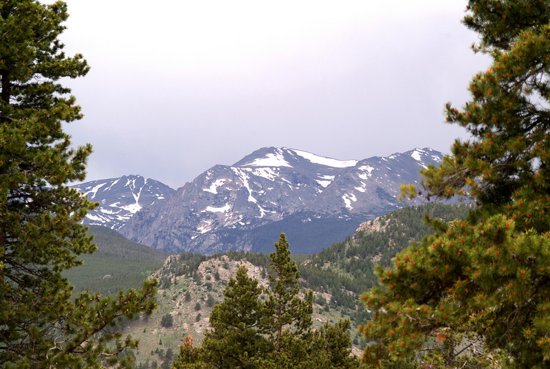 Rocky Mountain range in Estes Park, Colorado framed by trees.