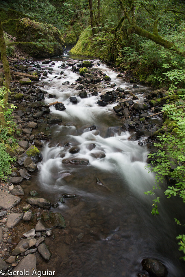 This tranquil stream led away from one of the many water falls in the gorge.