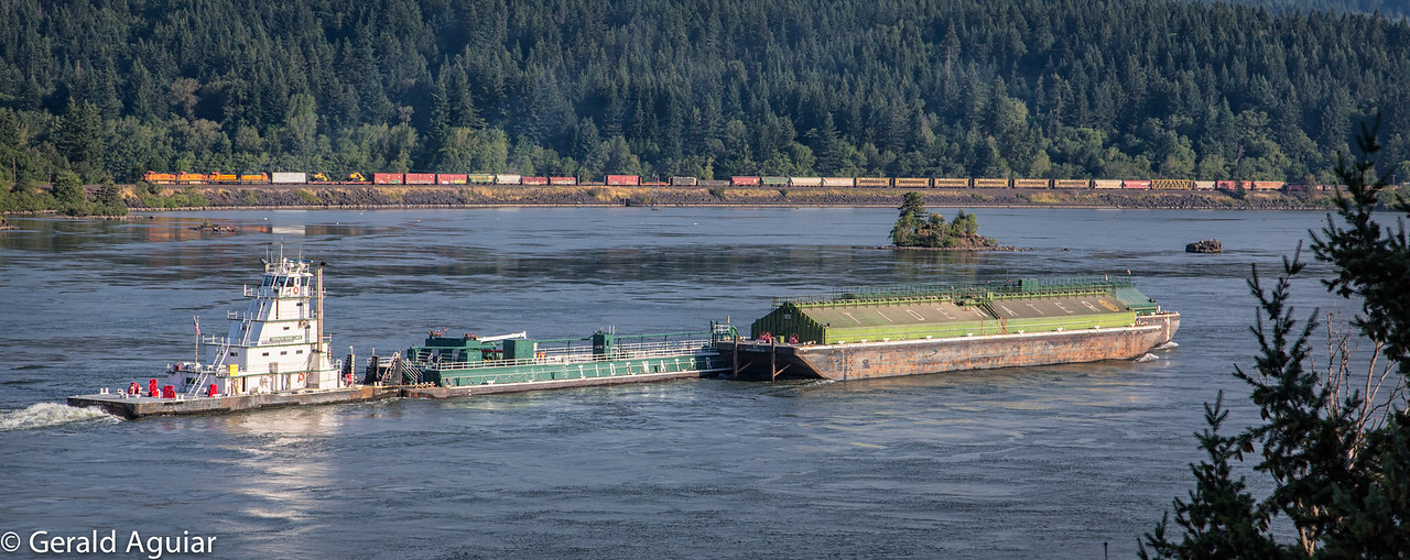 This is a photo of a barge transporting the equivalent of 400 truck loads of cargo.   I took this photo from our hotel balcony.  I like the fact that the barge is heading east and the train on the opposite or Washington side of the Columbia River is going west.