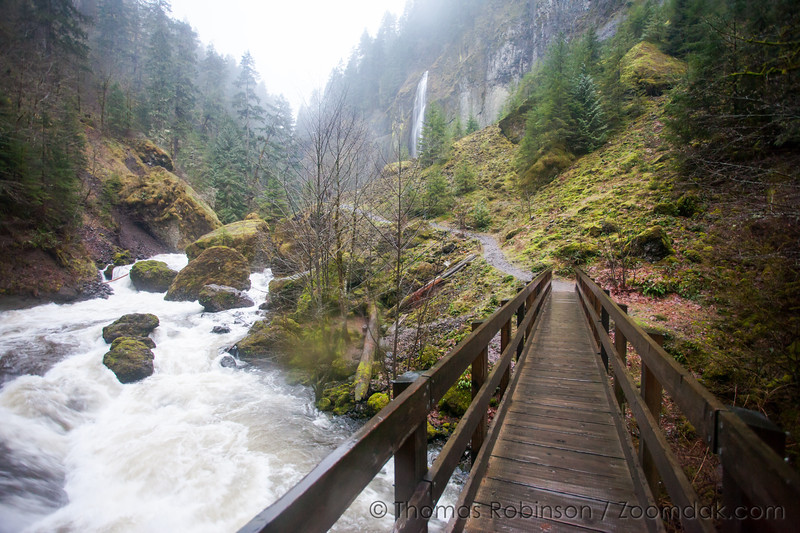 Trail to Wahclella Falls