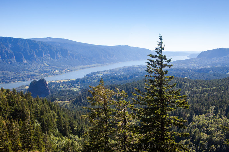 Columbia River Gorge from Hamilton Mountain