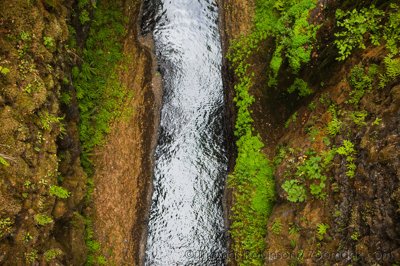 Eagle Creek Chasm