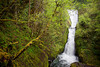 Bridal Veil Creek flows over Bridal Veil Falls, a drop of 118 feet total, into Columbia River Gorge in Oregon.