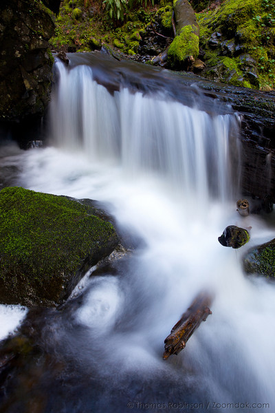 A fallen log creates a small waterfall along McCord Creek in the Columbia River Gorge.